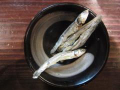 かしや【六】 ~【木曜日夜限定】鶏白湯ラーメン~-9
