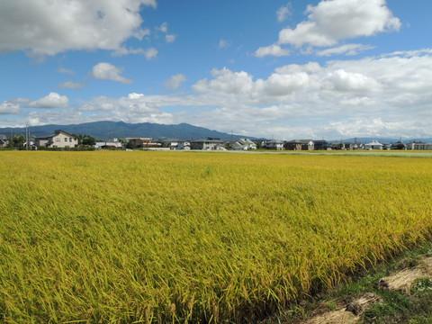 お店の近くの景色(磐梯山方面)