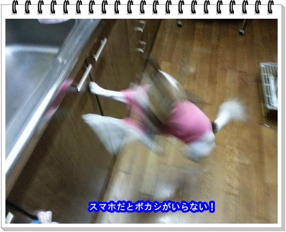 2012ブログNo2