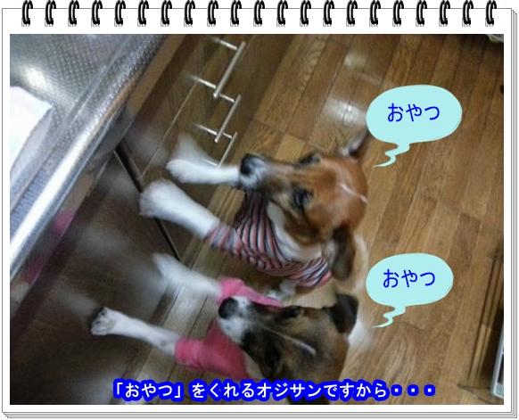 2012ブログNo3