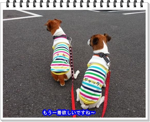 2012ブログNo4