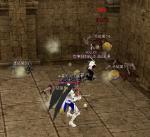 mabinogi_2010_08_13_025.jpg