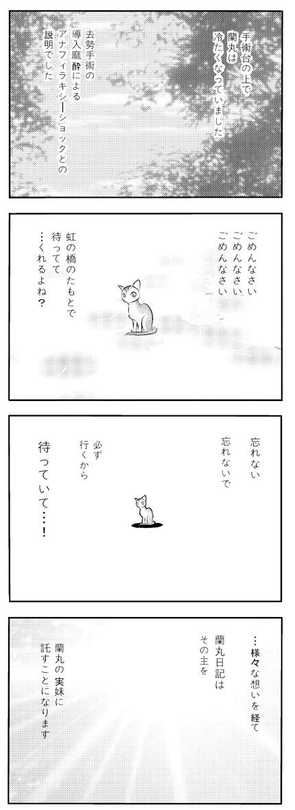 ranmaru_044_2.jpg