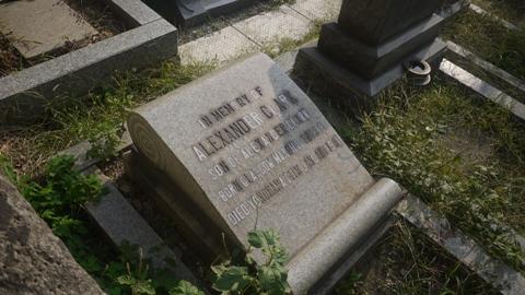 横浜 墓地