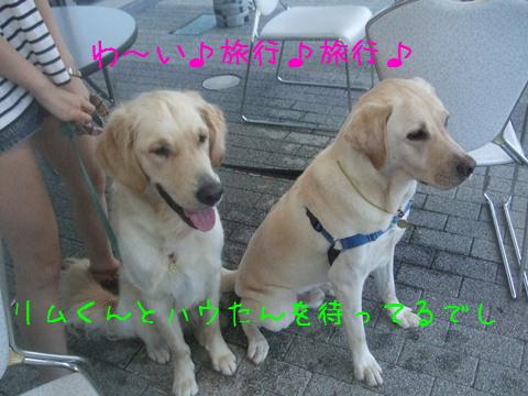 001_20120824132030.jpg