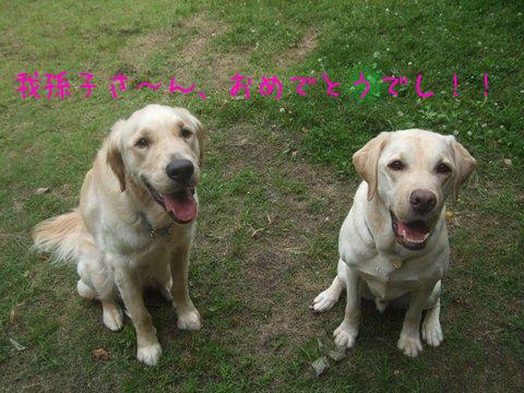 019_20120629125110.jpg