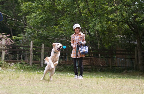 2012-05-26-12-50-11_fantasista.jpg