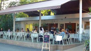 Cafe Sasha
