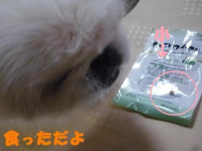 003_convert_20101117222259.jpg