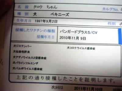 035_convert_20101111204713.jpg
