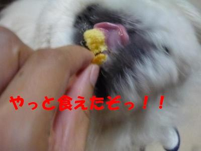 taro100926_convert_20100906220529.jpg