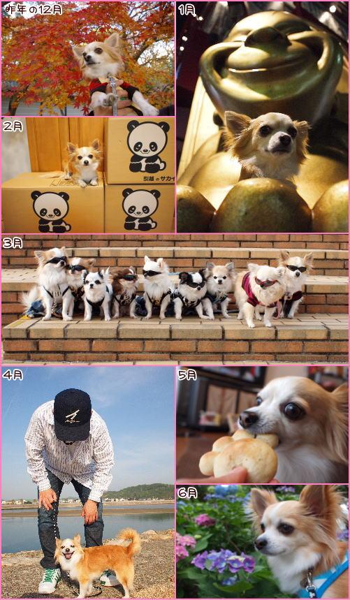 11-11 23Rayおめでとう