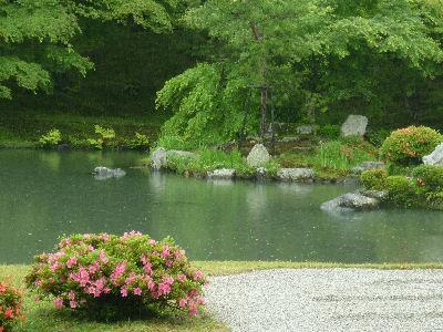 天龍寺のきれいな庭