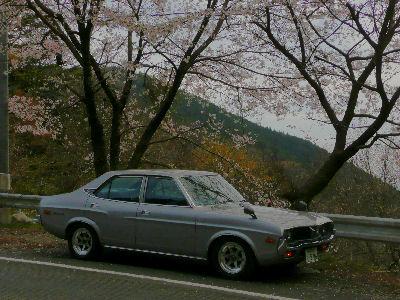 ルーチェと桜の山道