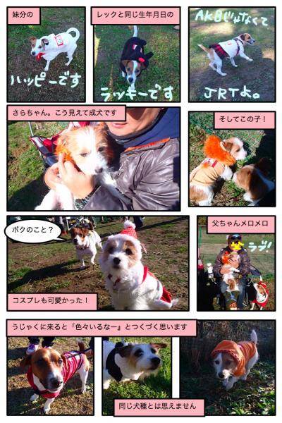 20111223-8_convert_20111223203016.jpg