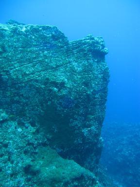 ガツンとした岩。
