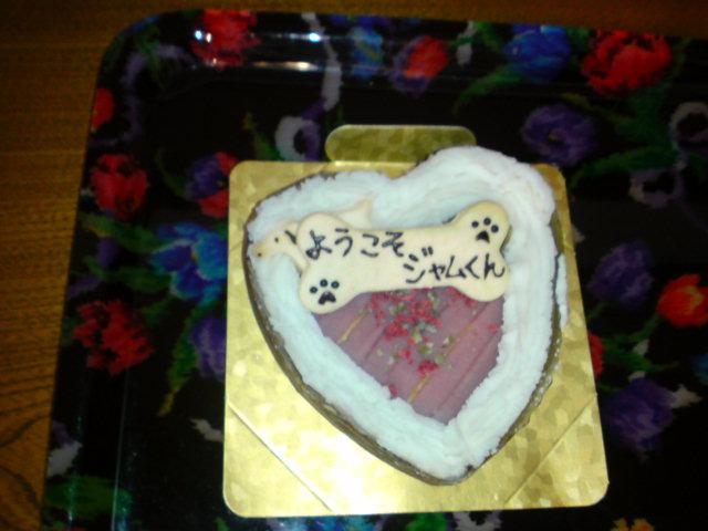 ようこそジャム君ケーキ