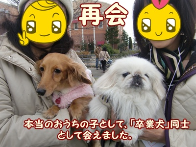 20111211084057459.jpg