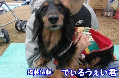 2011_1210_110847-CIMG6547.jpg