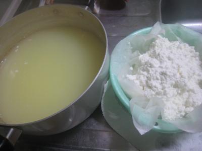 牛乳豆腐3