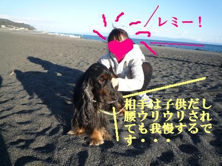 少女と我慢する犬