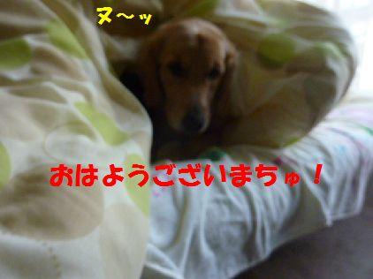 001_20100930052648.jpg