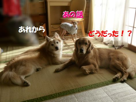 a_20111101072107.jpg