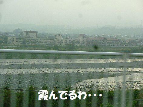 a_20111106101847.jpg