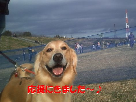 a_20111225095236.jpg