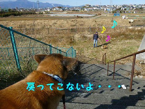 a_20120109084543.jpg