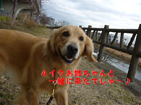 a_20120124075712.jpg