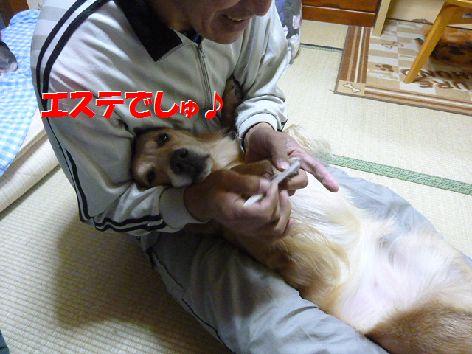 b_20111118070413.jpg