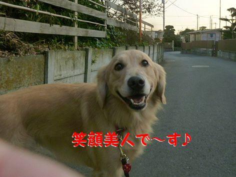 b_20111222070458.jpg