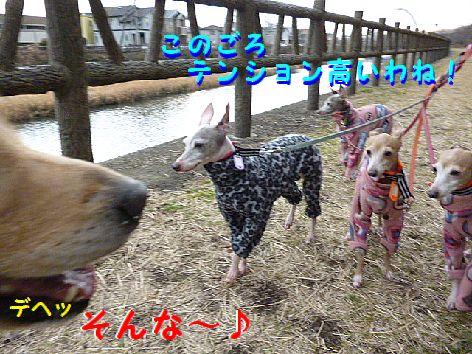 b_20120124080033.jpg