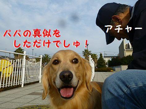 c_20120102093256.jpg