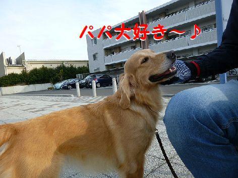 c_20120103105127.jpg