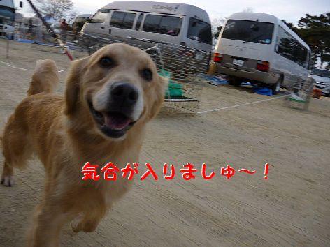 c_20120116071211.jpg