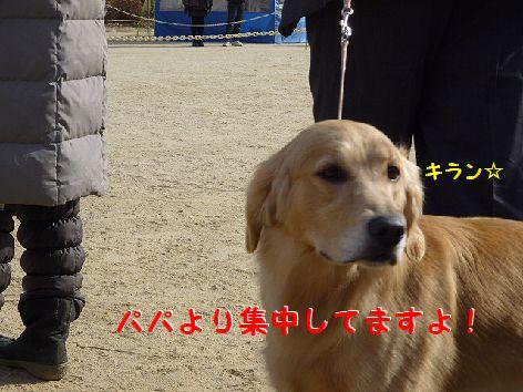 c_20120118062947.jpg