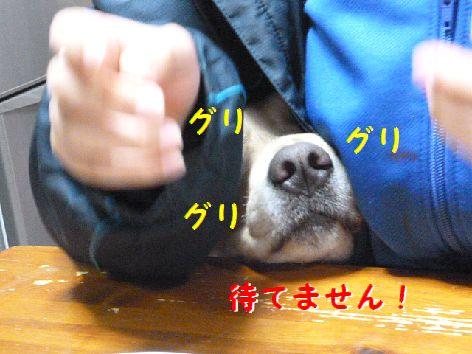 c_20120122084255.jpg