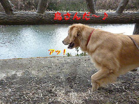 c_20120124080048.jpg