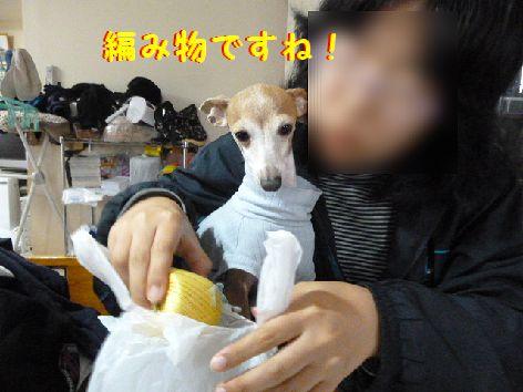 d_20111203103528.jpg