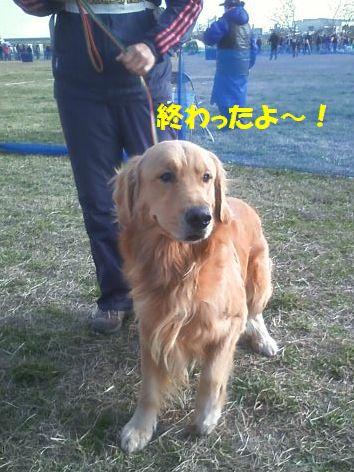 d_20111225095236.jpg