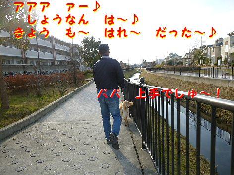 d_20120103105127.jpg