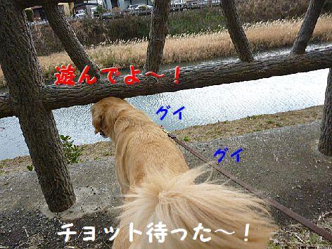 d_20120124080103.jpg