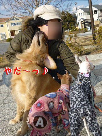 d_20120127071022.jpg