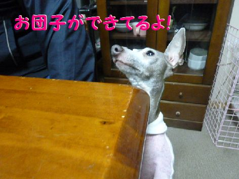 e_20111222070457.jpg