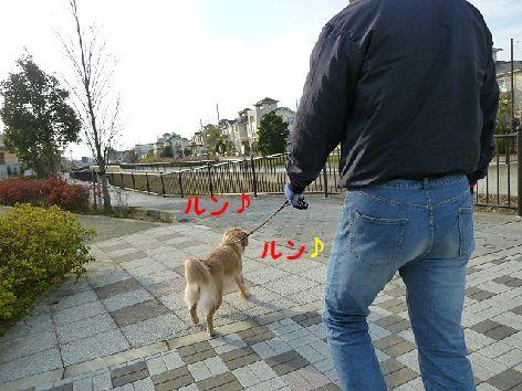 e_20120102093256.jpg