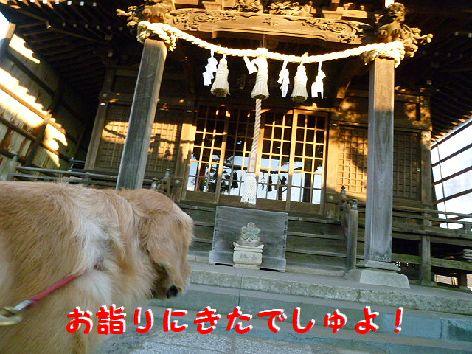 e_20120114080614.jpg