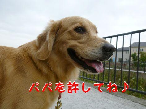 e_20120117073056.jpg