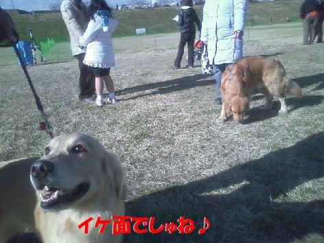 f_20111225095235.jpg